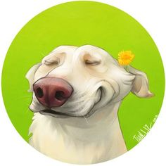 Ideas for dogs funny cartoon smile Cartoon Smile, Cartoon Dog, Cartoon Drawings, Animal Drawings, Art Drawings, Dog Illustration, Illustrations, Dog Paintings, Dog Portraits