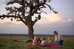 Picnic under an acacia tree in Kenya's Maasai mara. Kids safari experience.