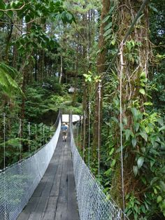 """""""The Bridge"""" at the Arenal Observatory Lodge, Costa Rica"""