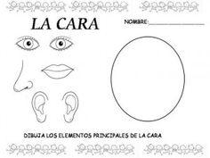 Con esta actividad los niños aprenderán con mas exactitud las partes de la cara.