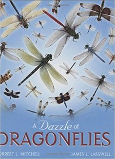 Steenbock Library   insects   dragonflies   entomology