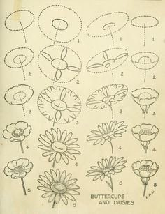 "From a public domain book, ""Drawing made easy : a helpful book for young artists; the way to begin and finish your sketches, clearly shown step by step (1921), by E G Lutz."" Download this lovely antique book as pdf, kindle or epub here: https://archive.org/stream/drawingmadeeasyh00lutz"