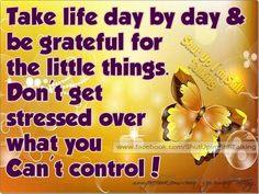 Be grateful for the little things in life. Don't get stressed over what you can't control!