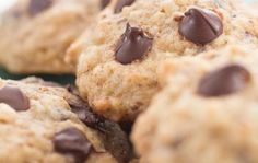 Chocolatey Chip Mealworm Cookies