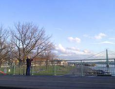 Die Brückenlandschaft eignet sich wunderbar für lange Spaziergänge in Deutz >> Deutzer Brücke mit Blick auf die Severinsbrücke