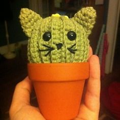 Too cute - Cat cactus free #crochet pattern from @ramenneedles