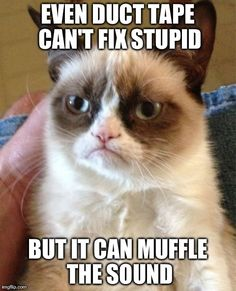 Grumpy Cat ...