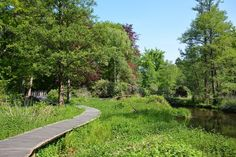 Swalmen Limburg, wandeling van 8 kilometer door het dal van de Swalm Sidewalk, Van, Travel, Holidays, Landscape Paintings, Viajes, Holidays Events, Side Walkway, Holiday