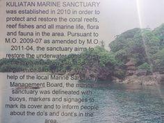 FINDING THE OFF THE BEATEN PATH OF KULIATAN MARINE SANCTUARY – lakwatserongdoctor Flora And Fauna, Marine Life, Underwater, Paths, Restoration, Under The Water