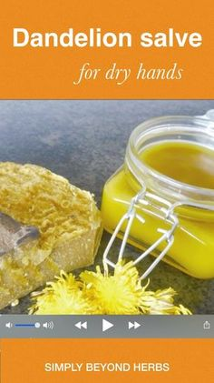 The dandelion salve is suitable for people with cracked and dry skin. It heals really quickly and gives a pleasant moisturizing effect. # Skin Care videos coconut oil Dandelion salve for dry hands Salve Recipes, Homemade Soap Recipes, Healthy Foods To Eat, Healthy Life, Healthy Recipes, Dandelion Recipes, Healing Herbs, Healing Books, Dry Hands