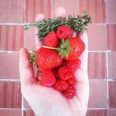 My garden: fruit and herbs harvest.  #garden #freshfood