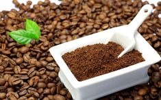 Coffee grounds as a fertilizer for indoor flowers - House Plants , Growing Indoors - Kaffee Grinding Coffee Beans, Limpieza Natural, Coffee Face Mask, Coffee Industry, Ground Coffee Beans, Hair Growth Oil, Quites, Hair Oil, Bio