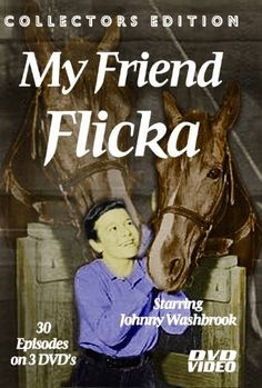 """My Friend Flicka-TV SERIES-3 DVD Set-30 Episodes-Starring Johnny Washbrook , http://www.amazon.com/dp/B0062ZIPF4/ref=cm_sw_r_pi_dp_scLIrb1T3Q6TQ  """"FLICKA was a 900-pound pure Arabian mare. She was sorrel (a copper-red shade of chestnut), and had originally been called Wahana"""" http://www.myfriendflicka.com/flicka.html"""