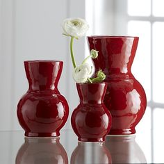 Cerise Red Vases | Crate and Barrel