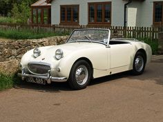 Frog Eye, Austin Healey Sprite, Super Cars, Pond, Convertible, Antique Cars, Classic Cars, Automobile, 1950