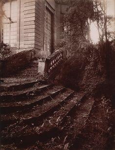 Parc de Sceaux, mai, 8 h. matin, Eugène Atget, 1925