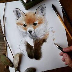 Fox Illustration, Watercolor Illustration, Illustrations, Cute Sketches, Cute Drawings, Watercolor Animals, Watercolor Paintings, Dandelion Drawing, Fox Drawing