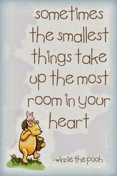 Wise Words to Live By | Sometimes the smallest things take up the most room in your heart.| From Karin Sebelin Google+ | inspirational quote of the day