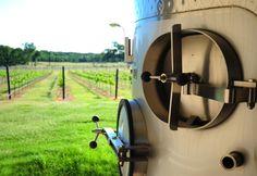 This is Grape Creek Winery - we take tours there. Phone: 830-997-TOUR  Toll Free: 877-TEX-WINE  tour@texas-wine-tours.com