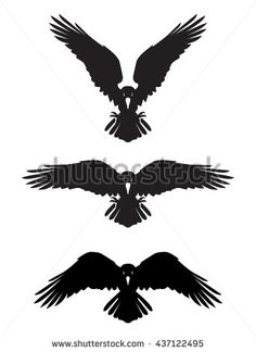 Image result for ravens open wings