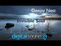 DeeJay Nest feat. Digital Sound - Invisible Soul ( 2016 ) - YouTube