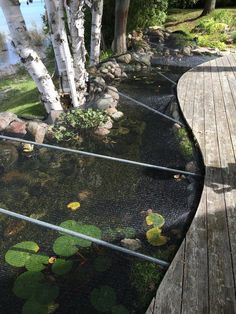 9 Awesome Diy Koi Pond And Waterfall Ideas For Your Back Yard ... on small backyard designs, slope landscaping on a budget, landscaping on a tight budget, small backyard patio landscaping ideas, small backyard garden, backyard decorating ideas on a budget,