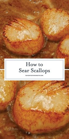 Seared Scallops at home are easy to make. Learn how to prevent your scallops., Pan Seared Scallops at home are easy to make. Learn how to prevent your scallops., Pan Seared Scallops at home are easy to make. Learn how to prevent your scallops. Best Fish Recipes, Tilapia Fish Recipes, Favorite Recipes, Healthy Recipes, Healthy Scallop Recipes, Healthy Meals, Baked Scallops Recipe Healthy, Breaded Scallops Recipe, Salmon And Scallops Recipe