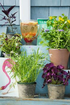 Five Easy Pieces to Transform Your Outdoor Space - Lonny- pitcher
