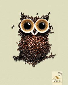 Owl made out of coffee beans and two shots of espresso.