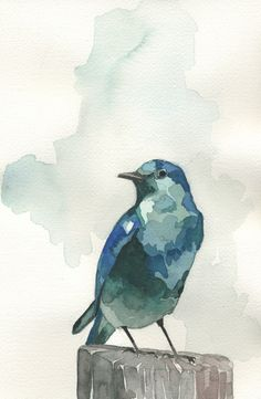 Beautiful bird paintings and prints by @thevioletline at etsy.com