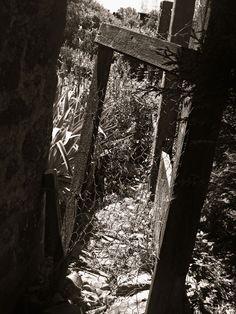 A dark adventure.  A door to a terrifying world. No return. Just death