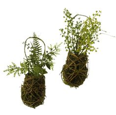SINCERELY FOREVER INVENTORY  fern baskets great for hanging at end of isles. Mix with baby's breath or your wedding flowers to spice it up. Rent for $3.99 each