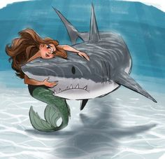 Mermaid and shark - cartoon Shark Mermaid, Mermaid Art, Animal Drawings, Cartoon Drawings, Shark Drawing, Shark Art, Cute Shark, Mermaid Pictures, Funny Animal Pictures