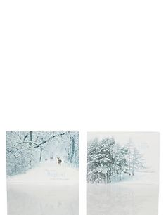24 Snow-Capped Trees Christmas Multipack Cards