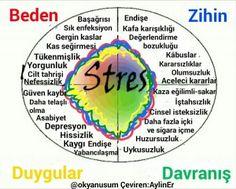 www.evolvedhealthnews.com