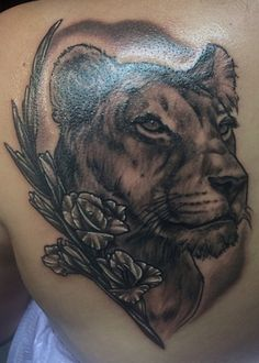 Spirit Gallery Tattoo - New London, CT, United States. lioness by Jared Dale