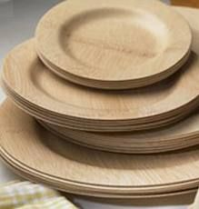 @lacegrl130: we could dispose of these easily, and bramble hill farm could use them as compost!  disposable bamboo plates - Beautiful and Elegant Bamboo Disposable Plates   Bamboo Skewers