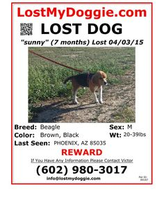 http://www.lostmydoggie.com/pet_images/pdf/faxing/89187.pdf