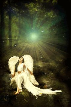 Angel in the Night .... Sarah Mclachlan - In The Arms Of The Angel http://www.youtube.com/watch?v=SnL1e4-NfaA