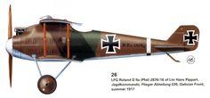 LFG Roland D IIa 2876/16, Galician Front Summer 1917, Hans Martin Pippart