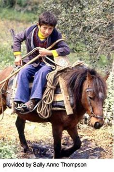 The Skyros Pony is a variety of the Greek Pony found throughout Greece. It is a light riding and draft pony found most usually in white, dun, bay or gray. The breed is nearly extinct.