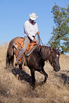 Cowboys ❦ paint-horse-dreamin:  Paso Robles Horse Ranch 34