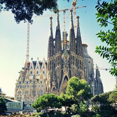 Barcelona Cathedral, Around The Worlds, Explore, Building, Travel, Viajes, Buildings, Destinations, Traveling