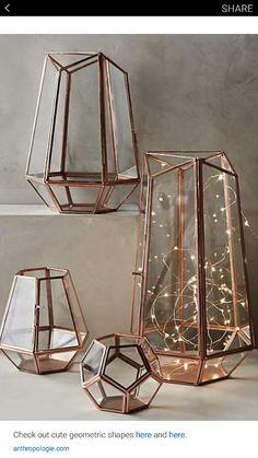 String lights in geraniums
