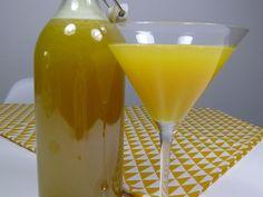 Recette punch Planteur bourbon    La recette punch planteur est une boisson à base de rhum q...