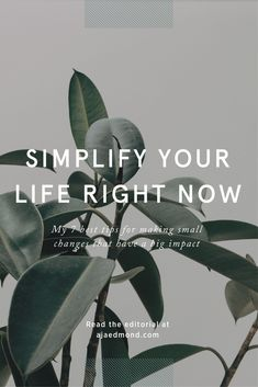 7 Best Tips to Simplify Your Life Right Now | Small Changes, Big Impact. Learn More and Take the Minimalism Challenge »