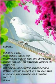 Lekker Dag, Afrikaanse Quotes, Goeie Nag, Goeie More, Uplifting Words, Good Morning Wishes, Bible Quotes, Worship, Poems
