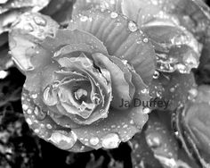 Black & White by Keisha Happy on Etsy! A beautiful collection of great Etsy finds! Enjoy!
