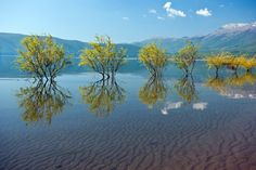Prespa lake, Greece.