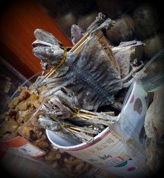 Gecko lizard on a stick in the Sheung Wan Medicine Street Market (April 2014) - Photo by BradJill